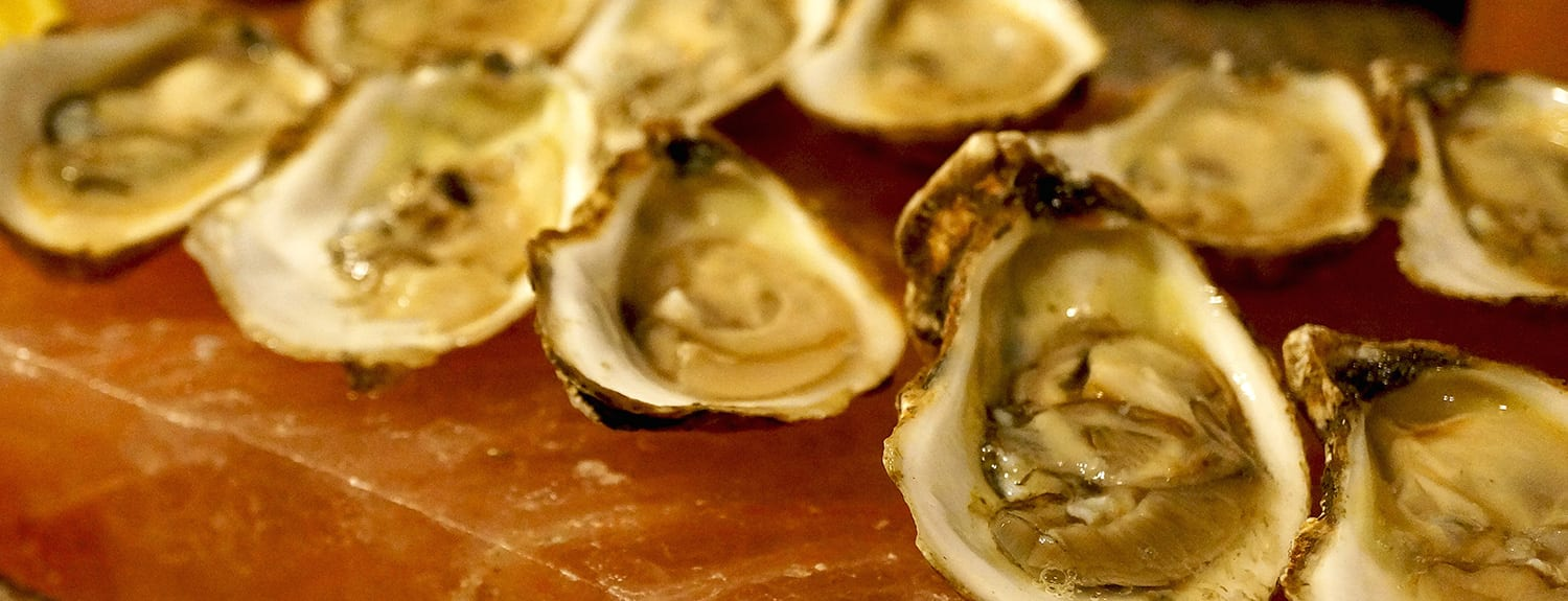 Dining - Oysters