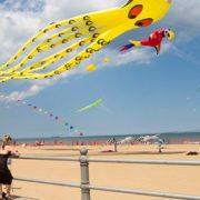 Atlantic Coast Kite Festival - Virginia Beach