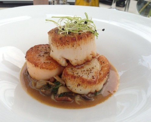 Virginia Beach Restaurants - Terrapin Restaurant