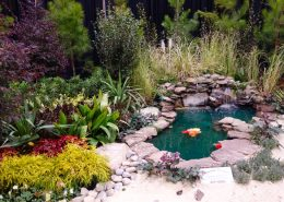 Virginia Flower and Garden Expo - Virginia Beach Hotels