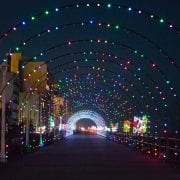 Holiday Lights Merry Mile | Virginia Beach Hotels - Oceanfront
