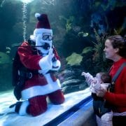 Virginia Beach Hotels - Oceanfront | Santa at Aquarium