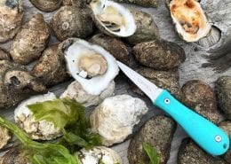 Oysters! - Best of Virginia Beach | Virginia Beach Hotels - Oceanfront
