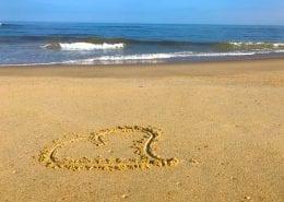 Virginia Beach Hotels - Oceanfront | valentine's day