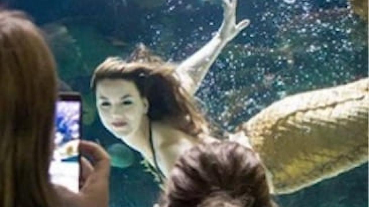 Mermaids in Virginia Beach | Virginia Beach Hotels - Oceanfront