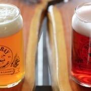 Virginia Beach Hotel Special - Brewery Tour Festival