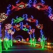 Virginia Beach events - holiday lights at the beach